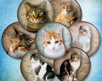 "Cats & Kittens 1"" bottlecap images for pendants 1 inch round Digital Collage Sheet 30mm 25mm 1.25"" 1.5"" circles printable download cabochon"