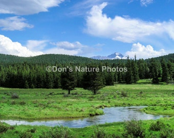 Long's Peak, Rocky Mountain National Park. An interesting shot with some nice clouds and lots of green. #2147