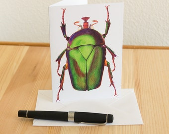 Beetle Colored Pencil Blank Notecard