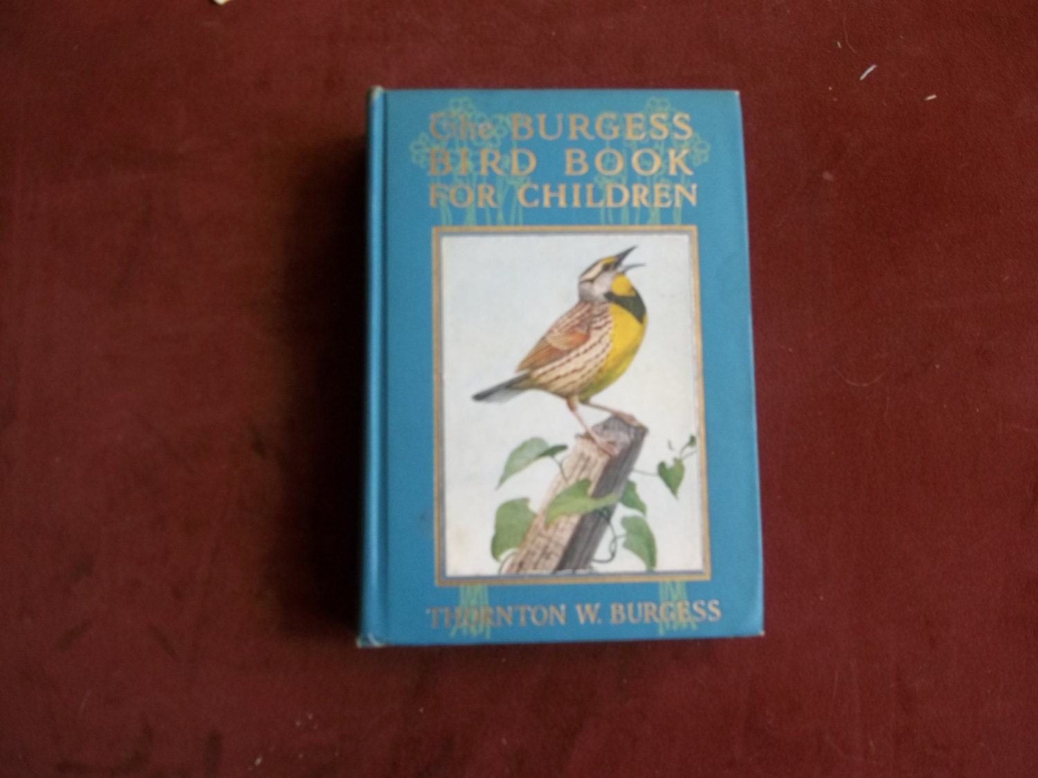 The Burgess Bird Book For ChildrenThornton By