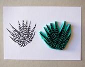 Haworthia, Succulent cactus plant, rubber stamp, hand carved, zebra succulent