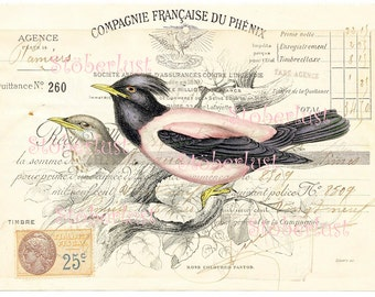 INSTANT DOWNLOAD french vintage bill handwriting with stemp and marks with a pair of birds shabby