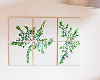 Sponte Collection | Parietaria Diffusa details: 6 tiles 10x10cm