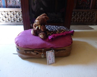 Suitcase dog bed-teacup/toy