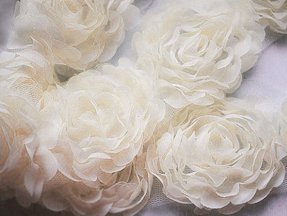 cream lace backgroundseriano rose -#main