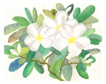 Plumeria Bloom - Original Watercolor