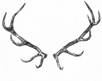 Deer horns - Temporary tattoo