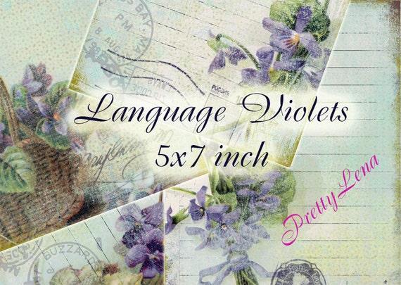 Language Violets printable INSTANT DOWNLOAD art journaling Scrapbooking Vintage card