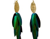 Fancy Beetle Wing Gold  Tone Earrings