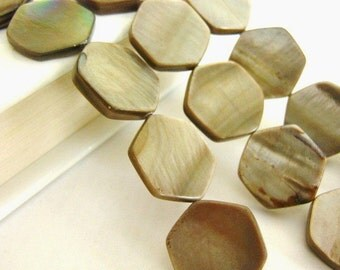 17mm Hexagon Beads Brown Shell Beads Full Strand