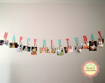 Milestone - Photo Banner- 1 st Birthday Decoration