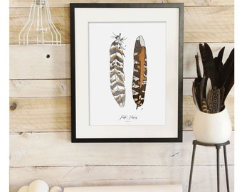 Feather Patterns - Scientific illustration. Beautifully textured cotton canvas art print. Order as an 8x10 11x14 or 16x20 size. Vol.1