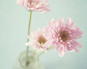 Nature photography, pink flowers, blue floral Photograph, shabby chic decor, flower photography, still life, pale pink - Pretty in Pink