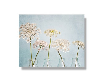Queen Annes Lace photo canvas, pale blue, flower wall art, flower photo canvas, nature photography, shabby chic decor - Itty Bitty White