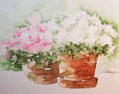 Pink and White Flowers in Flower Pots Original Watercolor Painting