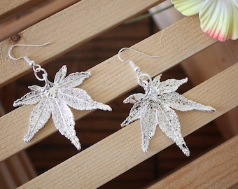 Silver Leaf Earrings, Japanese Maple Leaf, Real Leaf Earrings Maple, Sterling Silver, Nature, LESM56