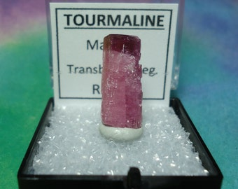 Sale TOURMALINE Bicolor Candy Apple Red Tip Rubellite Pink Natural Terminated Gemstone Crystal In Specimen Box From Russia