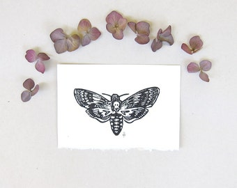 Entomology Study - Death's Head Hawkmoth Linocut 4 x 6 inches Hand Pulled Print
