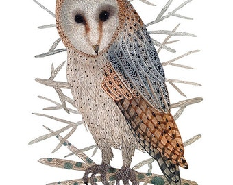 Barn Owl Print, bird art, giclee print, watercolour, watercolor art, owl illustration