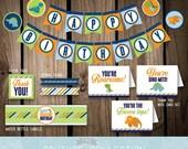 DECOR Package Dinosaur Birthday Party Decoration Stripes Cute Dinosaur Dino Boy Birthday Printable DIY Digital File Instant Download