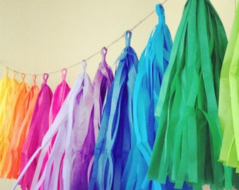 Rainbow fun tissue paper tassel garland rainbow for Arland decoration