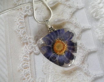 Denim Blue Daisy w/Dewdrop Pressed Flower Glass Triangle Pendant-April's Birth Flower-Symbol Loyal Love-Nature's Art-Gifts For 25