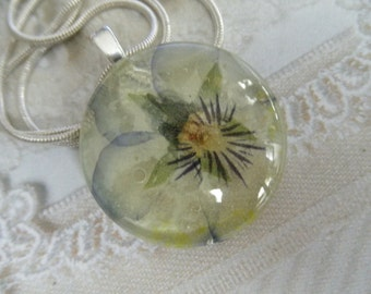 Pastel Pansy Whisper Soft Ombre Coconut Swirl Lavender-Yellow Pansy Pressed Flower Round Glass Pendant-Symbolizes Loyalty-Gifts Under 30