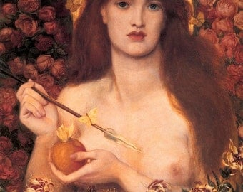 Elixir of Aphrodite Perfume Oil - Honeyed Apricots, Guiac Wood, and Vanilla Musk