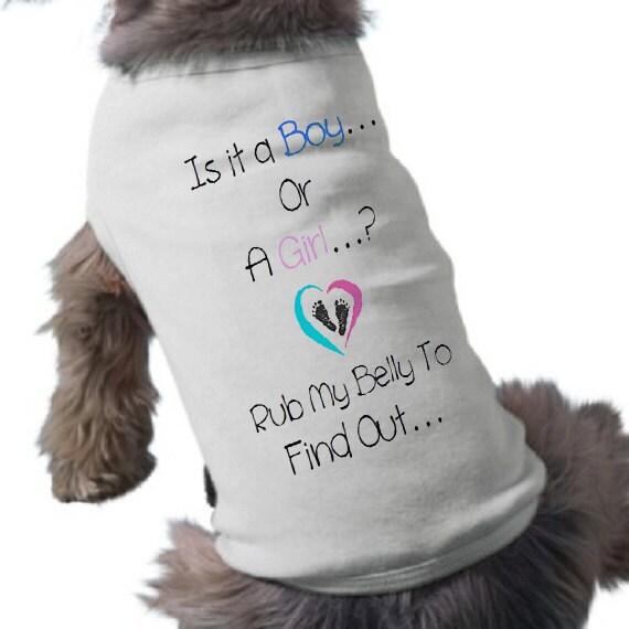 Big Brother Shirt For Small Dog