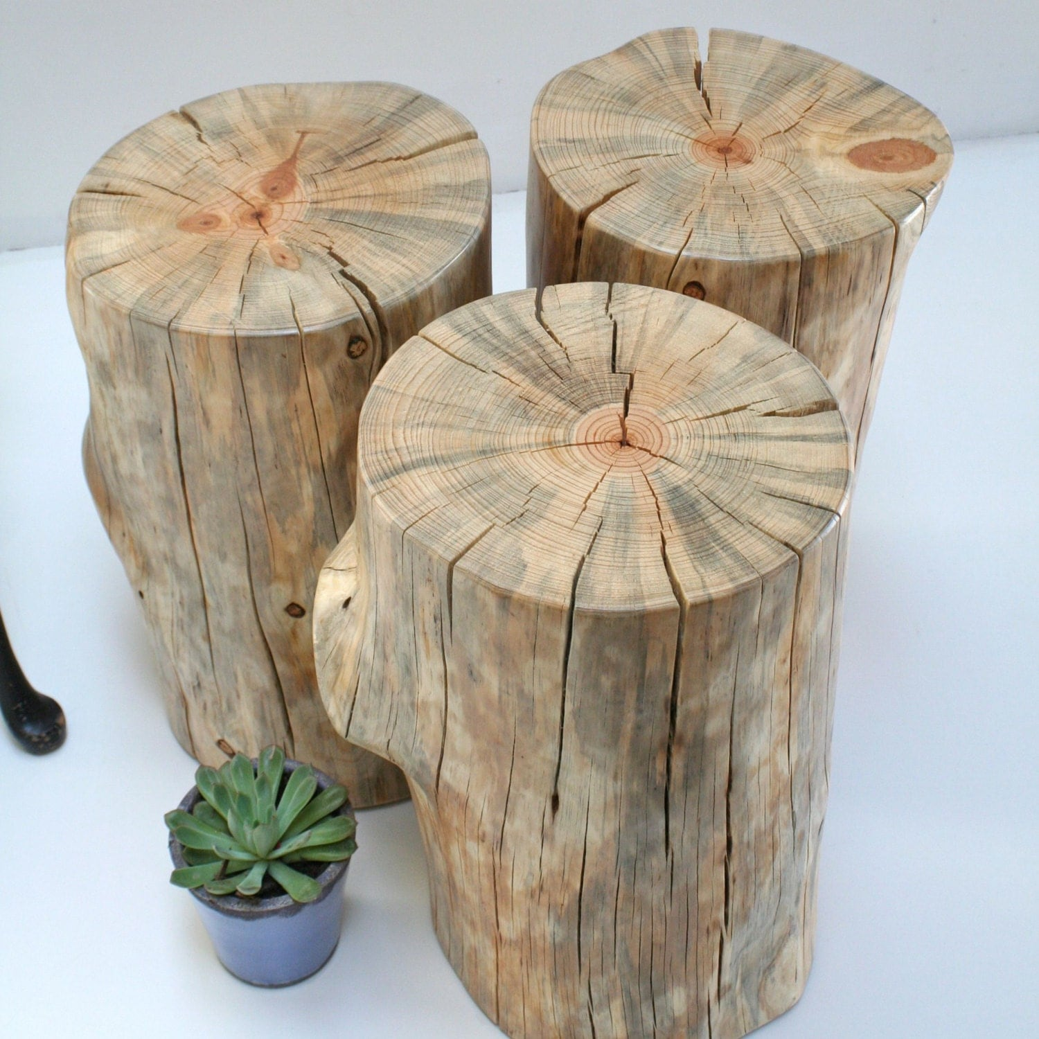 Image Result For Tree Stump Coffee Table Uk