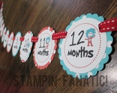 Seuss Inspired Collection Just Born/0-12 mos Banner with clips. First Birthday Photo Banner. Picture Banner. Thing 1 Thing 2 Cat Hat Balloon