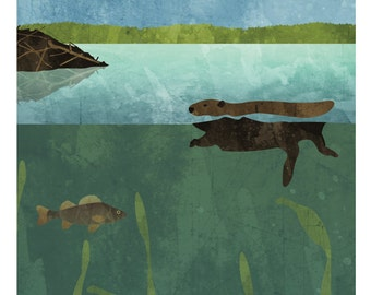"""Nature Poster: Pond, 12 x 24"""""""