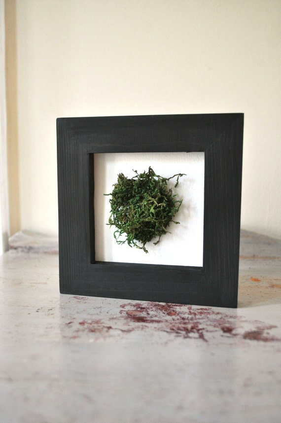 framed moss mini wall art home decor by chasinghome on etsy. Black Bedroom Furniture Sets. Home Design Ideas