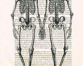 Typographic Print, Digital Print Typography, Wall Decor, Halloween, Skeleton, skull Wall Hanging, Wall Art Personalized Print: 2 Skeletons