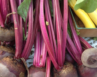 SALE! Detroit Dark Heirloom Beet Seeds Sweetest Flavor Grown to Organic Standards