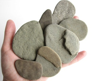 Raw Large Flat Pebbles - Undrilled Beach Stones - Shades of Gray