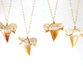 Fossilized Shark Tooth Necklace, Gold Shark Tooth Necklace, Fossil Shark Tooth Pendant, Large Shark Tooth Pendant, Real Shark Tooth Necklace