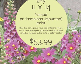 Any 11 x 14 Framed or Frameless Scripture Print from Prints of Peace