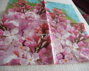 Decoupage napkins, photo, Paper Napkins, Decoupage, teal, blue, pink,  multicolor, Scrapbooking, spring, pale, 2 pcs