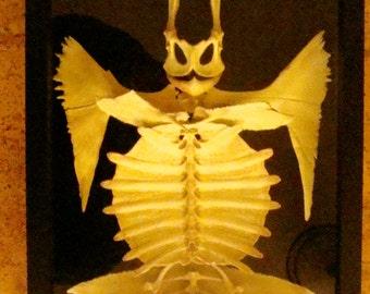 Bone Sculpture Art Real Bone