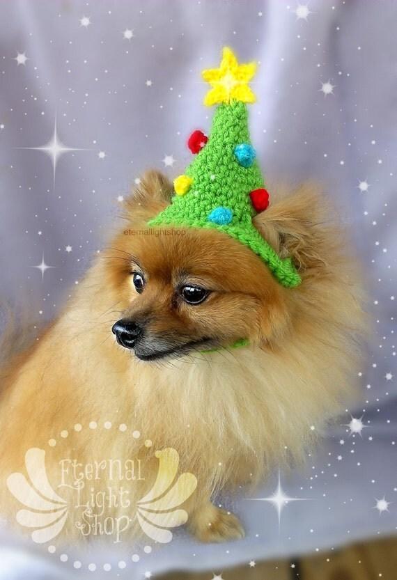 Christmas Tree Pet Hat (XS-XL)