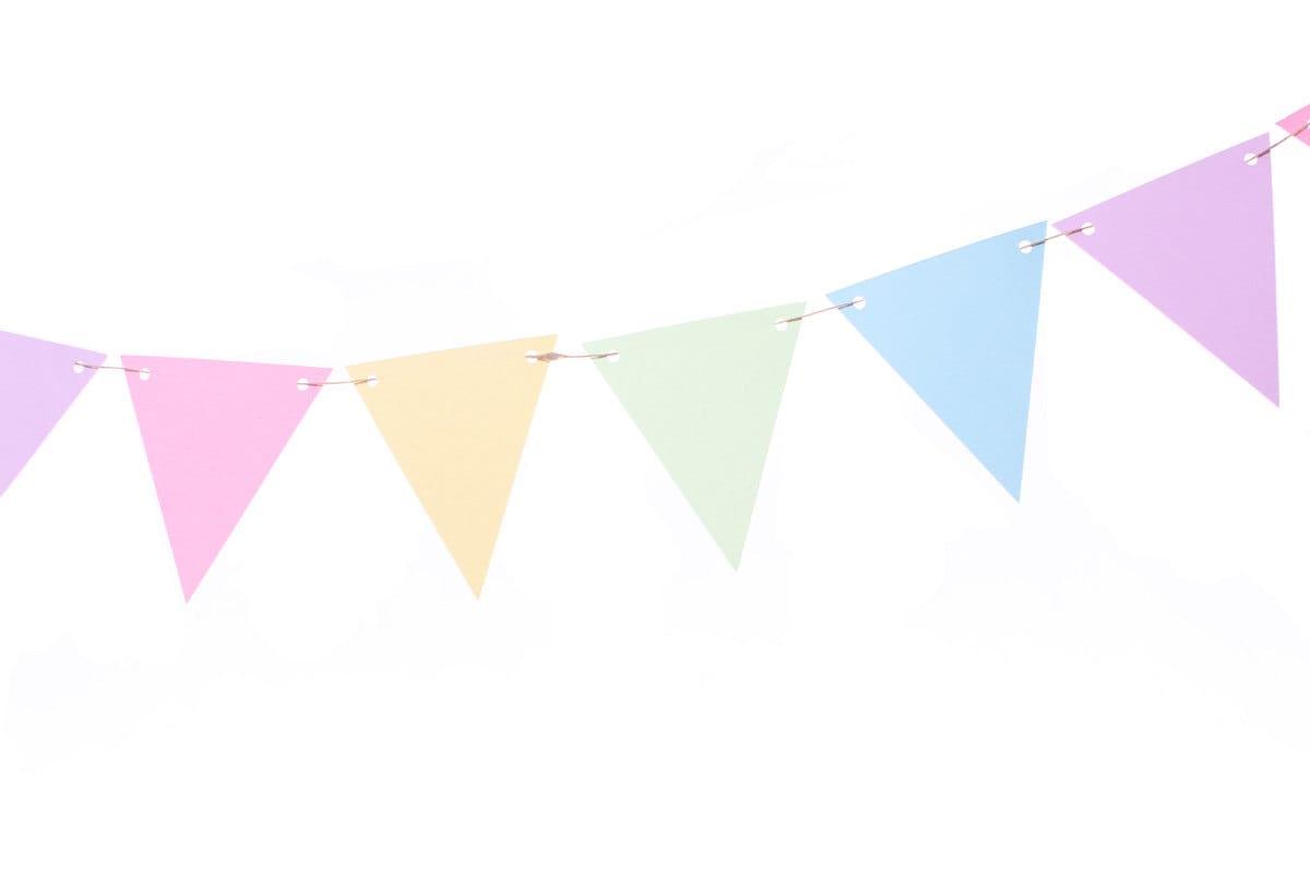 Pastel Rainbow Flag Banner Pastel Rainbow Party Banner
