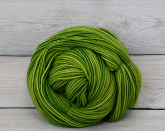Calypso - Hand Dyed Superwash Merino Wool Light Worsted Yarn - Colorway: Sprout
