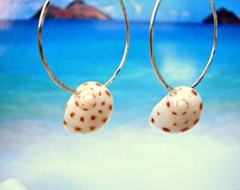 Seashell Earrings, Hawaii Shell Hoops, Hammered Silver Hoops, Beachy Earrings, Unique Hawaiian Earrings, Beach Wedding, Bridesmaid Gift