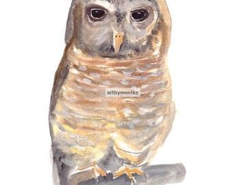 ORIGINAL watercolor painting owl painting animal art wall decor 9 x 12 inch nursery art