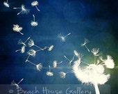 Dandelion Art Print, Navy Blue Wal Art, Modern Wall Art, Abstract Floral, Modern Floral, Dandelion Wall Art, Dandelions, Navy Blue Art