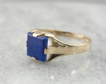 Sleek Royal Blue Men's Lapis Ring in Fine Gold with Clean Lines 19DPX3-N