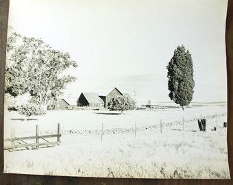 60s Large Art Photo / Black and White California Farm Scene