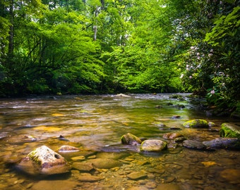 The Oconaluftee River, at Great Smoky Mountains National Park - Landscape Photography Fine Art Print or Wrapped Canvas