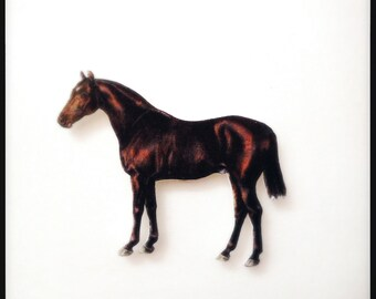 Year of the Horse Brown Stallion Magnetic Brooch - Wearable Horse Colour Illustration Pin